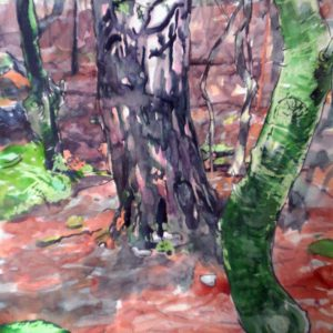 Trowbarrow Woodland with Limestone Grikes, pastel & watercolour