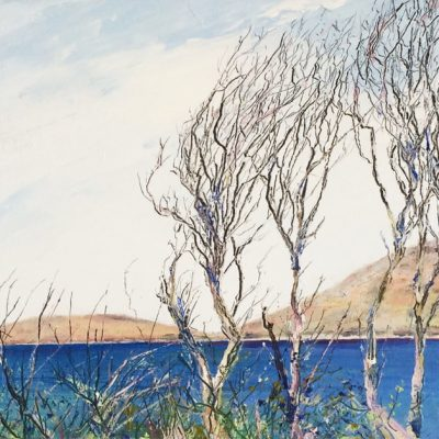 Windswept Trees at Cleggan, oil on board