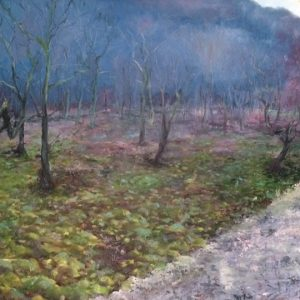 SOLD-Trees at Hardcastle Craggs, oil on board
