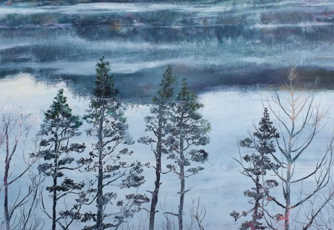 Pine Trees at Thirlmere