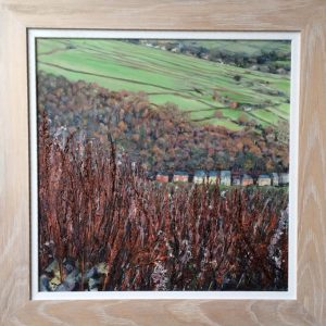 Wild Sorrel & Willowherb, Heptonstall, oil on board